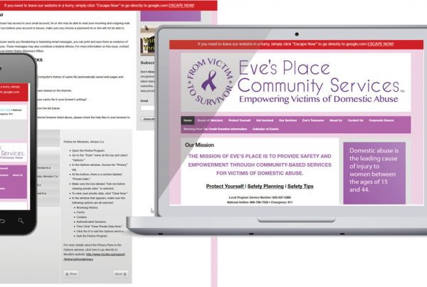 Website Design – Safety at Eves Place